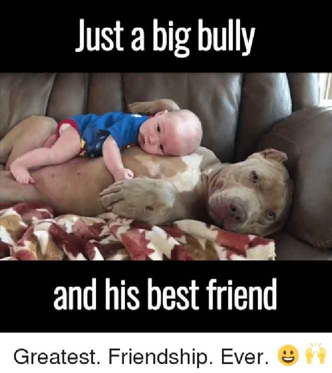 Just a Big Bully and His Best Friend - Greatest.Friendship.Ever.