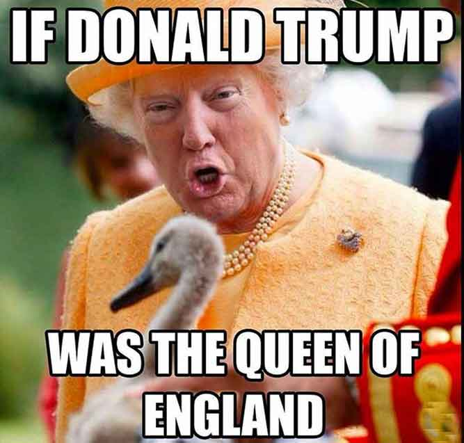 Donald Trump, England, and Memes: IF DONALD TRUMP WAS THE QUEEN OF ENGLAND