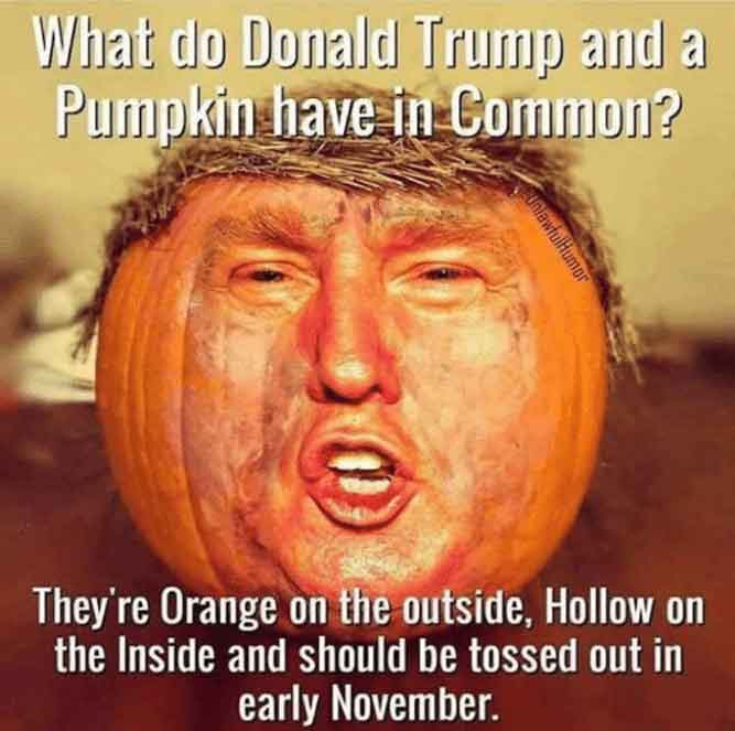 Donald Trump, Memes, and Common: What do Donald Trump and a Pumpkin have