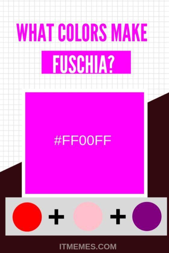 What Colors Make Fuschia It Memes